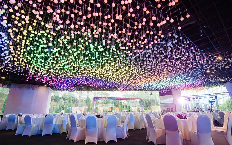 nothing can be more captivating than colourful fairy lights juxtaposed by beautiful blooms credits gardens by the bay