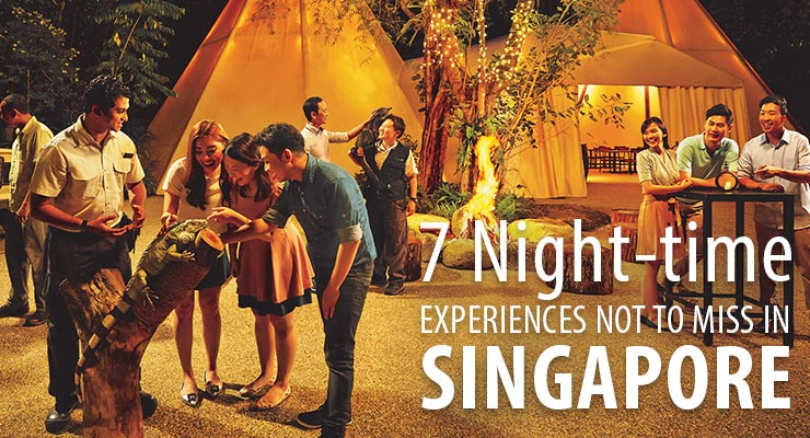 /uploadedImages/Features/Destinations/7-night-time-experience-in-singapore-02.jpg